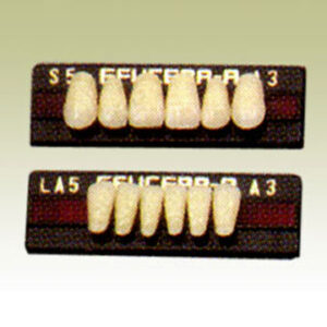 teeth_02_02